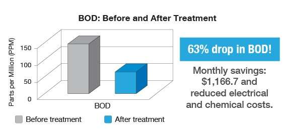 bodbeforeaftertreatment