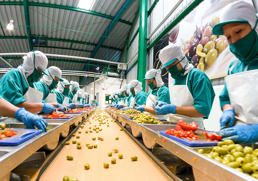 food factory workers